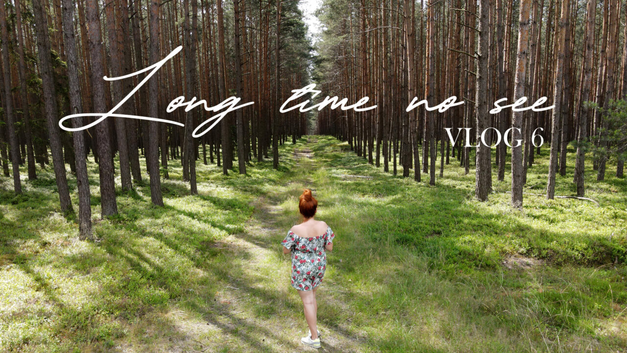 VLOG 7: LONG TIME NO SEE: waiting for spring, travelling and getting ready to reveal a secret